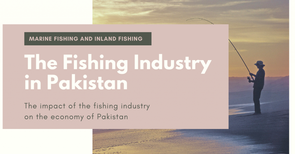 The fishing industry of Pakistan