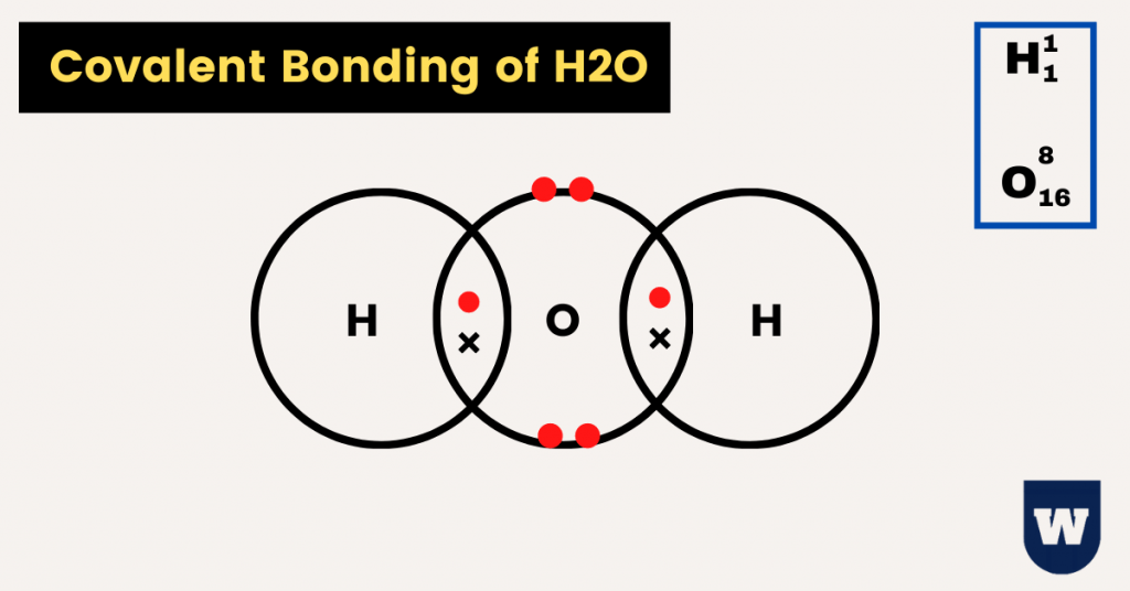 covalent bonding of water (H2O)